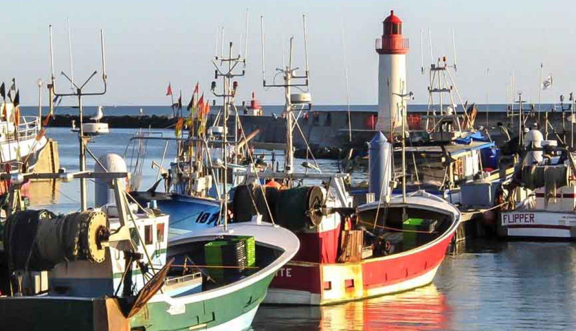 La flottille meubl s de tourisme 2 et chambres la - Chambre d hote ile d oleron la cotiniere ...